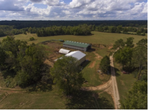 Louisburg NC Farm for Sale on Old Express Road