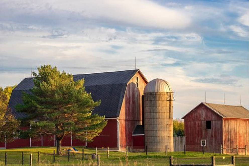 Why Farmland Investing Might be the Right Financial Move for You