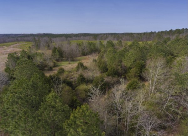 Warren County Land & Farms for Sale NC