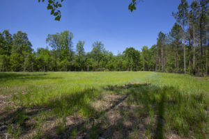 NC Duck Property for Sale