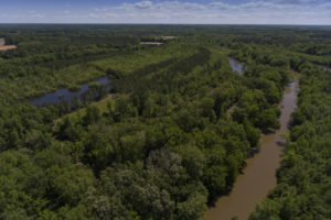 Duck Hunting Property for Sale NC