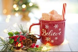 Raleigh Christmas Trees