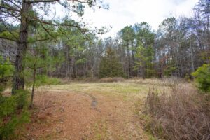 Just listed land for sale in Castalia NC