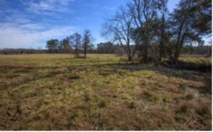 Lamont Norwood Lot for Sale in Pittsboro