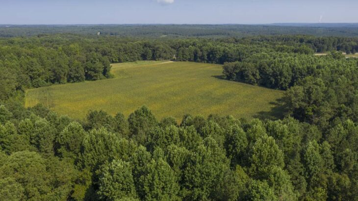 40 Acres for Sale on Hicks Road