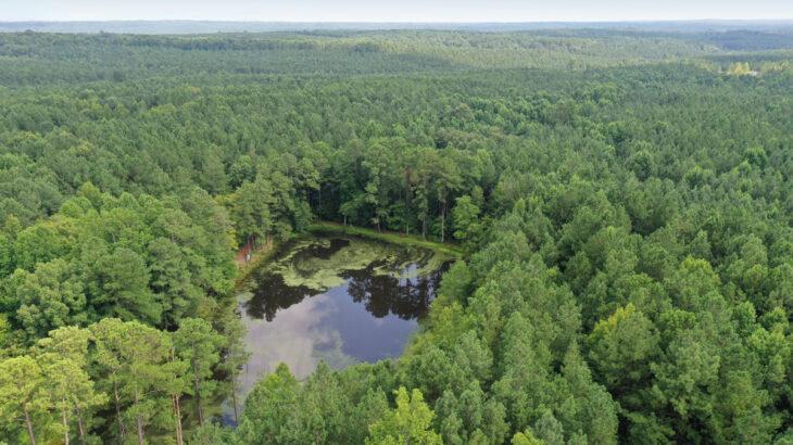Bruce Garner Road land for sale